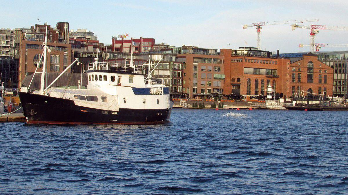 Balade hivernale dans le fjord d'Oslo