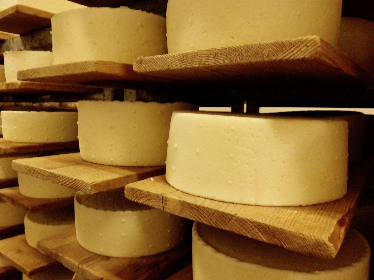 Cheese ! Souriez vous êtes en France !