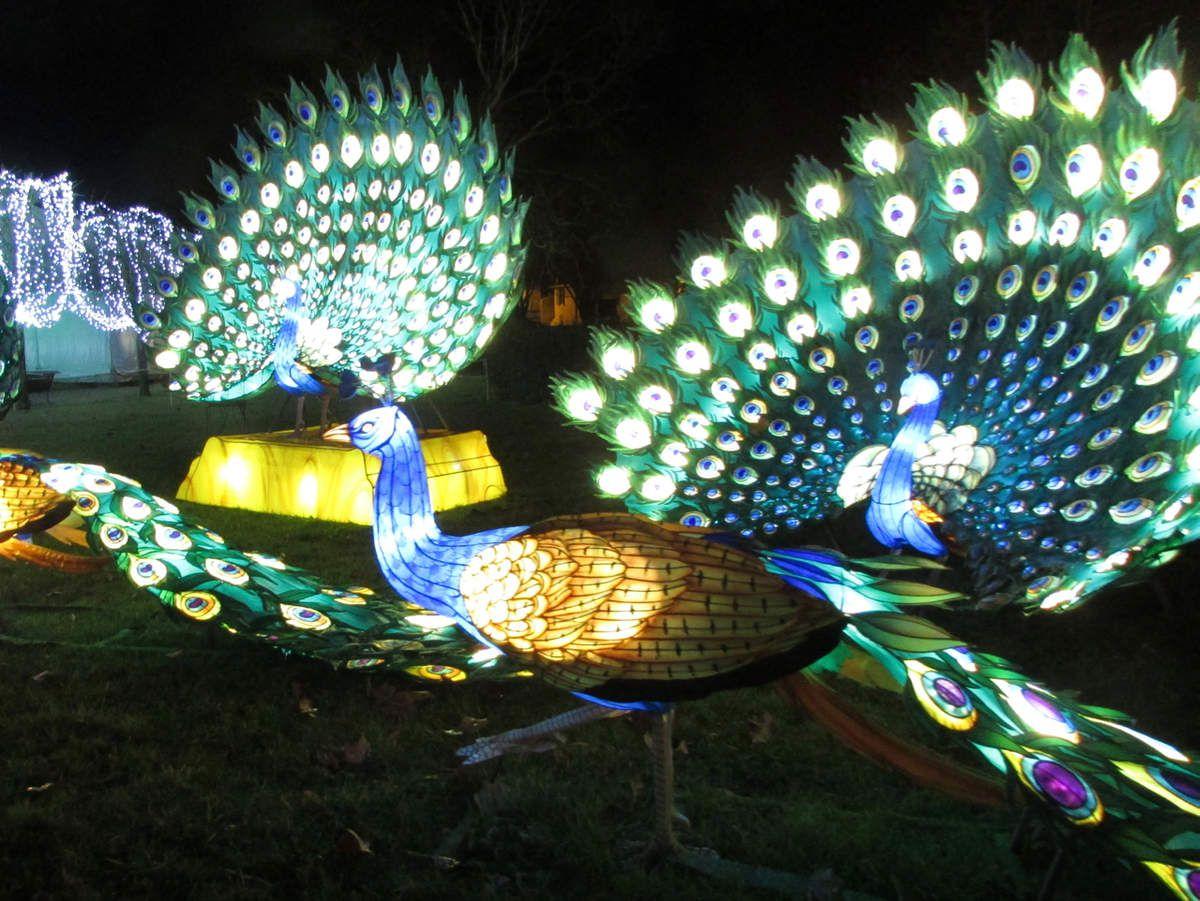 Un Festival des Lanternes pas seulement en Chine mais #EnFranceAussi