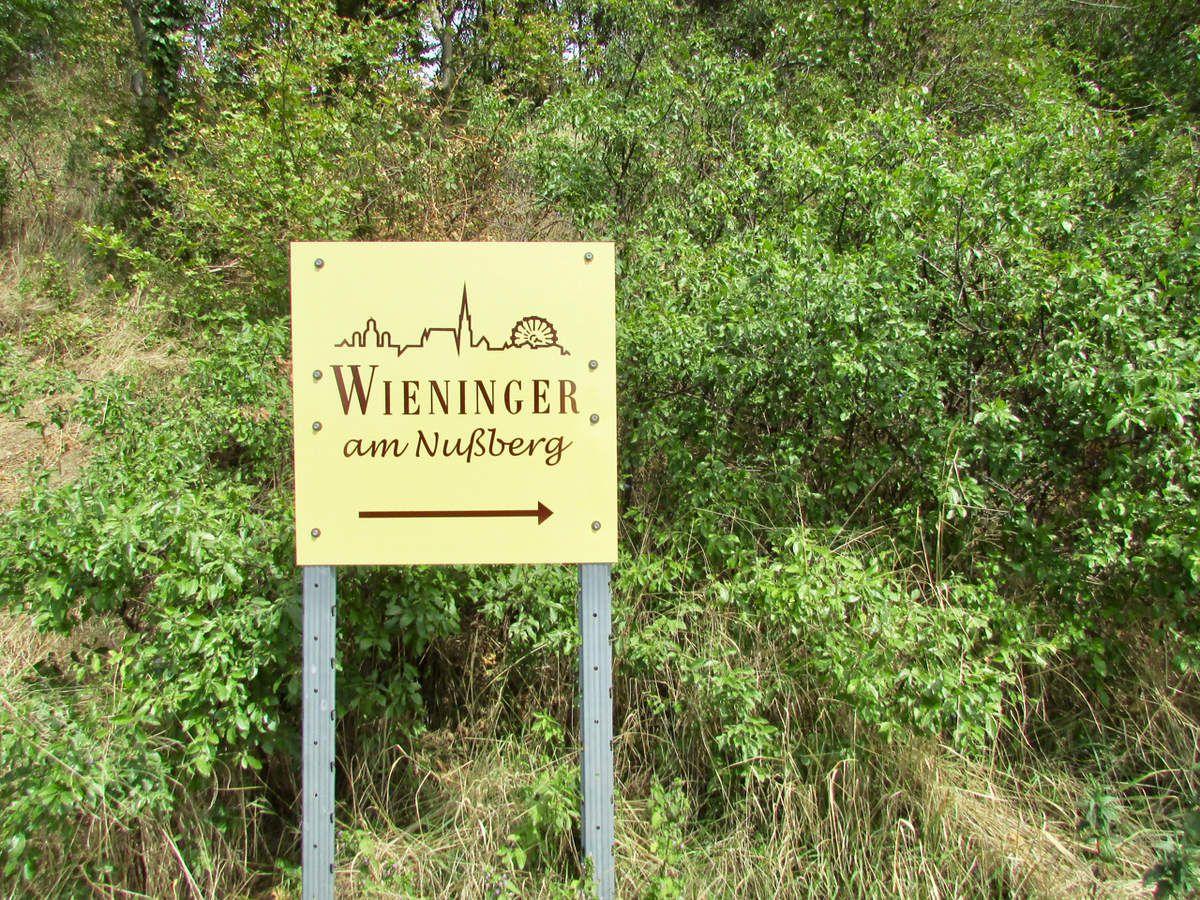 Oenotourisme à Vienne en Autriche : le Wieninger am Nussberg