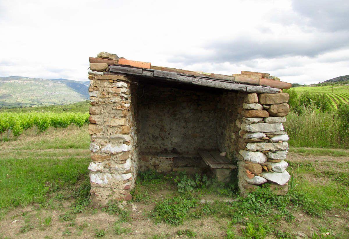 Oenotourisme en Languedoc : entre terre et mer au pays du Fitou