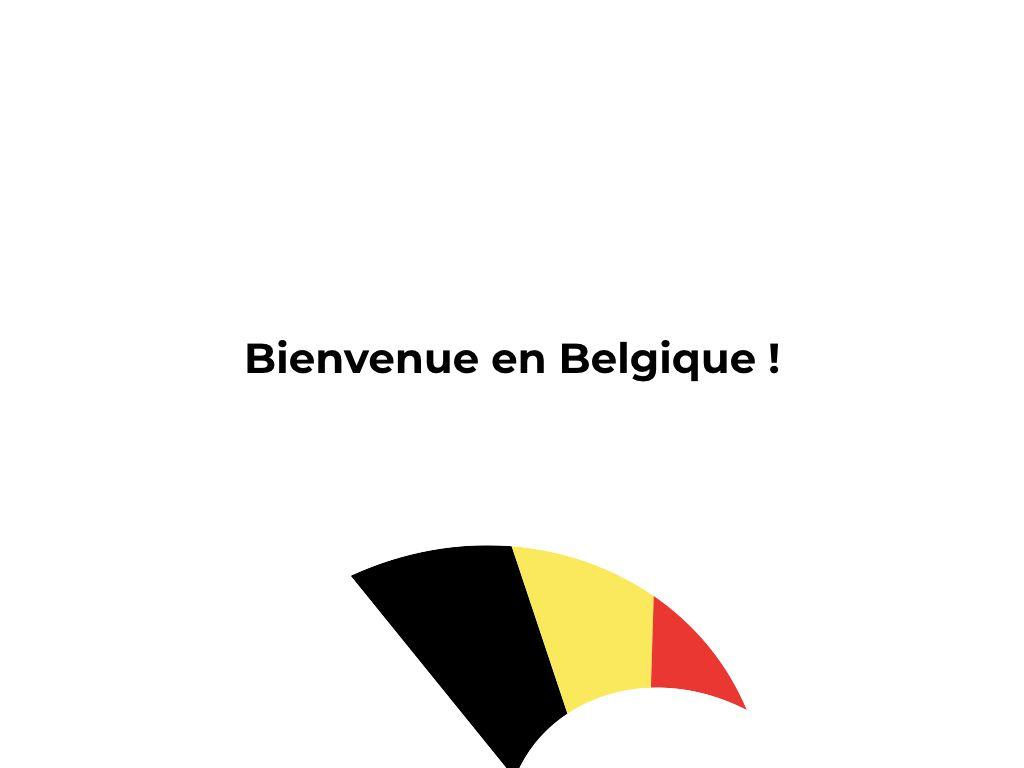 Petit voyage en Belgique