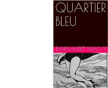 François DARNAUDET : Quartier bleu.