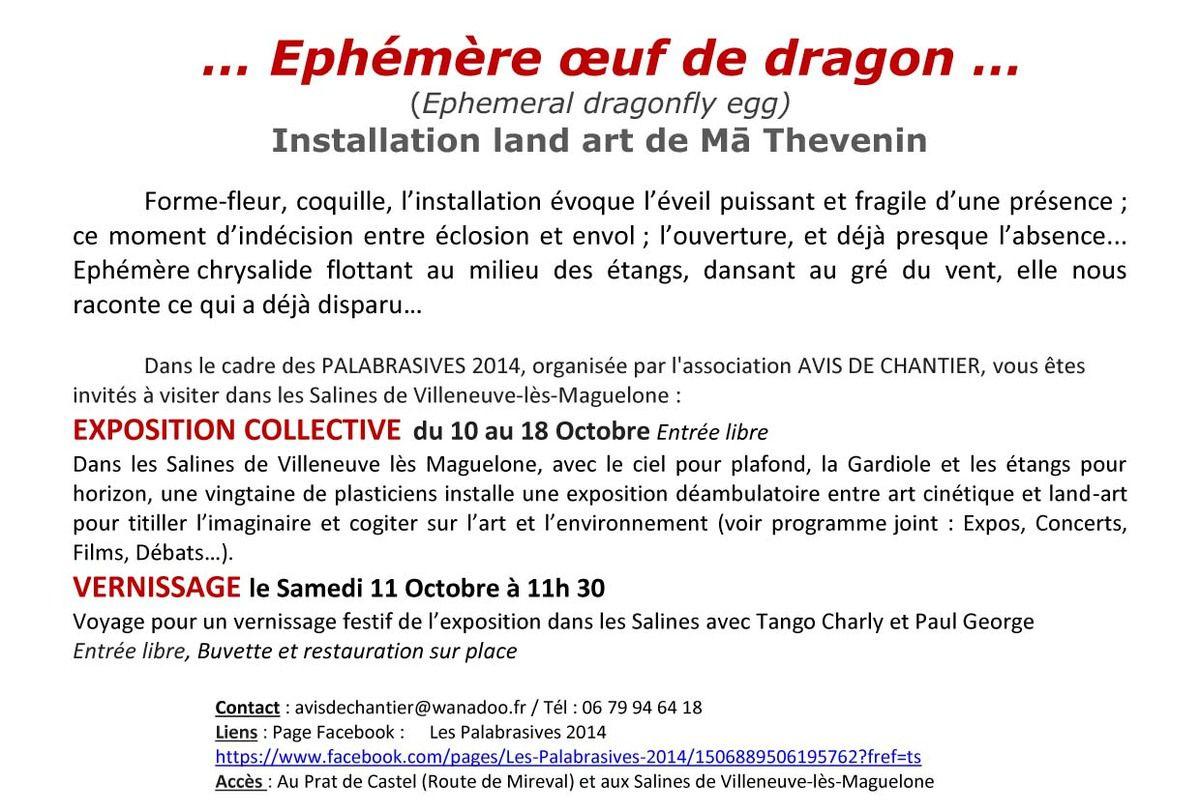 ÉPHEMERE OEUF DE DRAGON  (Installation) 10-18/10/14