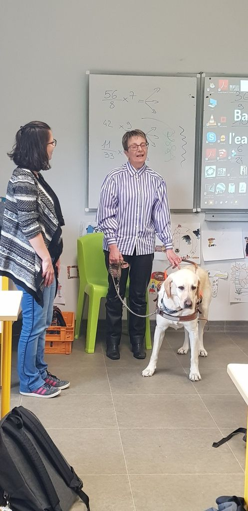 INTERVENTION ASSOCIATION CHIENS GUIDES D'AVEUGLES