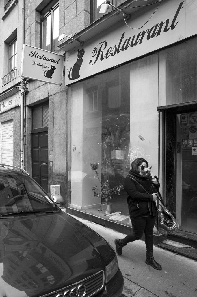 Restaurant Le Chat Noir. Saint-Etienne le 11 novembre 2017