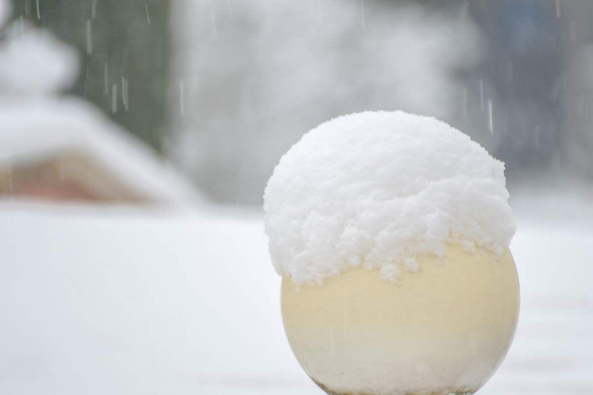 Il neige dans mon jardin