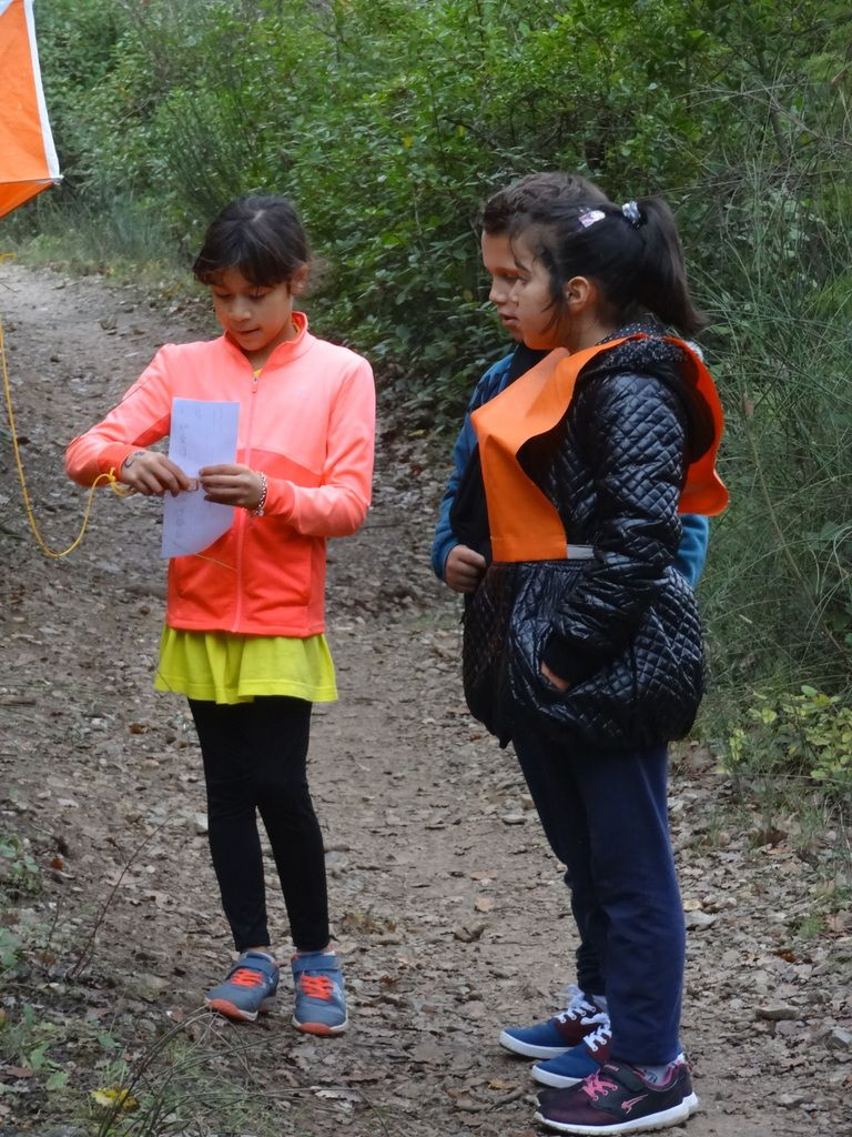 Les photos de la course d'orientation du 18/11/2016