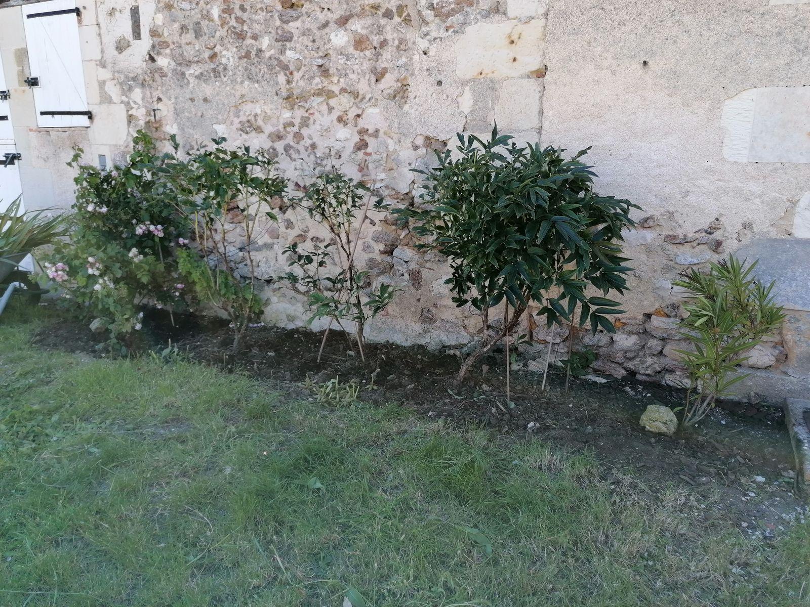 News: le jardin !