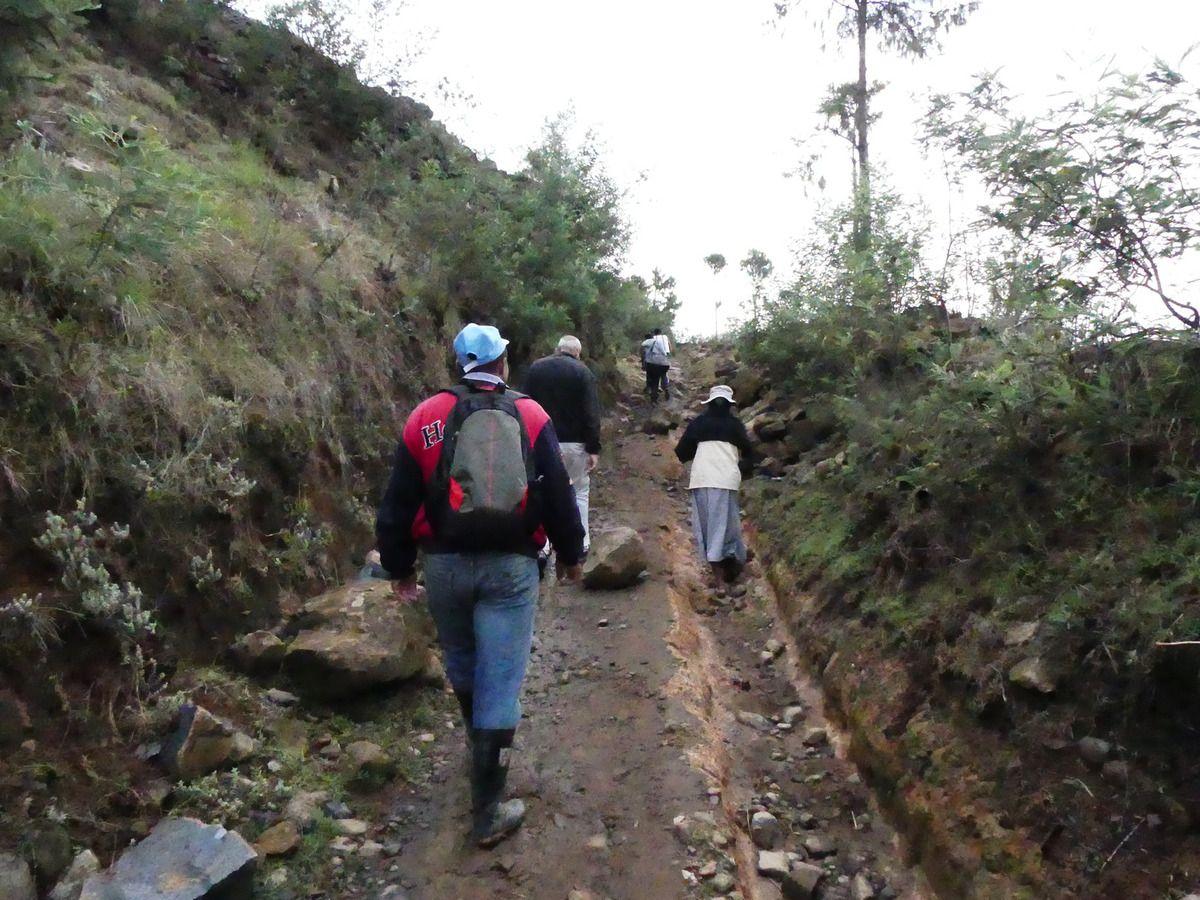 Le retour s'est fait à pied (12 km)