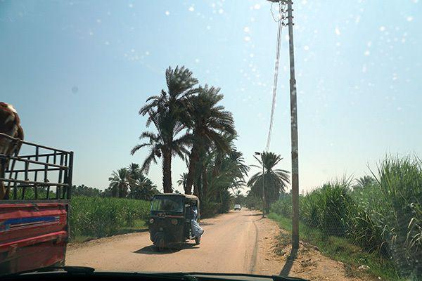 DARAW SOUK AL GAMEL 1- le marché aux chameaux de DARAW 1