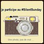 Silent-sunday #9