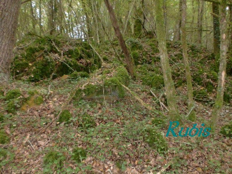 Mégalithe des Contoux ou menhir de Grosse Jambe, Valeuil