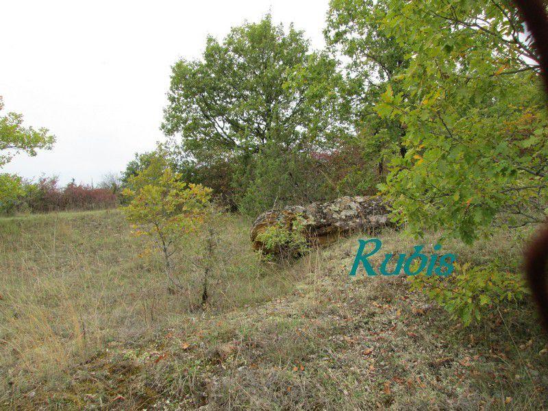 Dolmen de Peyre-Levade ou de Peyrolevado, Bourdeilles