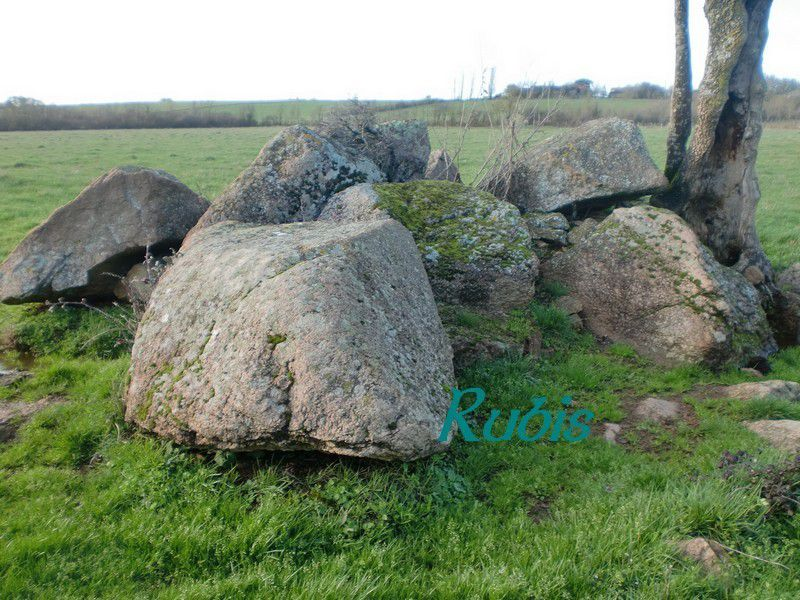 Menhir de la Pierre Pointue, Bazoges en Pareds