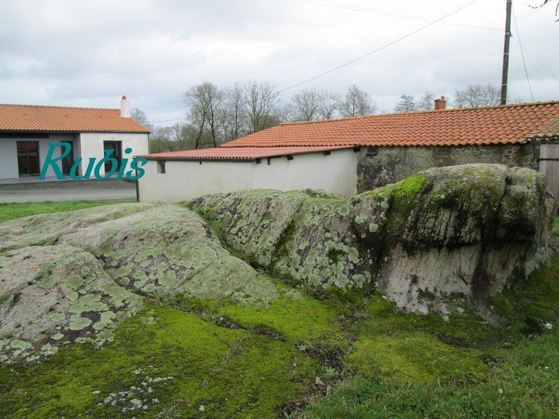 Rochers gravés de la Barre, deuxième groupe, La Boissière-de-Montaigu