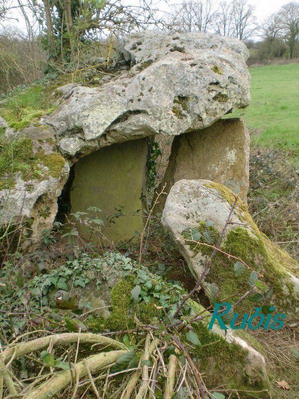 Dolmen de la Pierre Levée de Fontenille, Faye-l'Abbesse