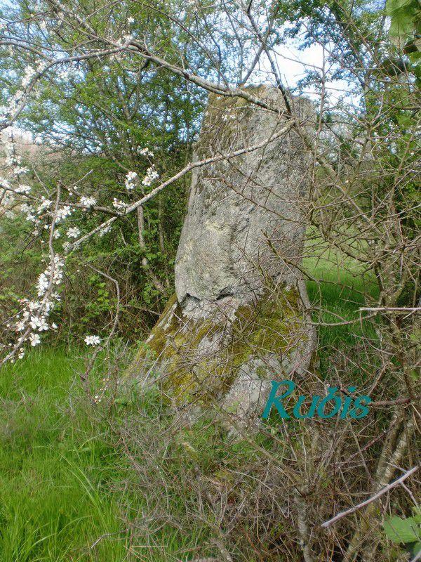 Dolmen des Bastides ou menhir de Pierre-Frite, Jouac