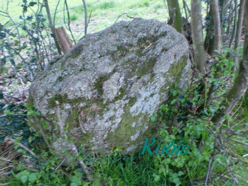 Menhir de Chanliat ou de Chers, Fromental