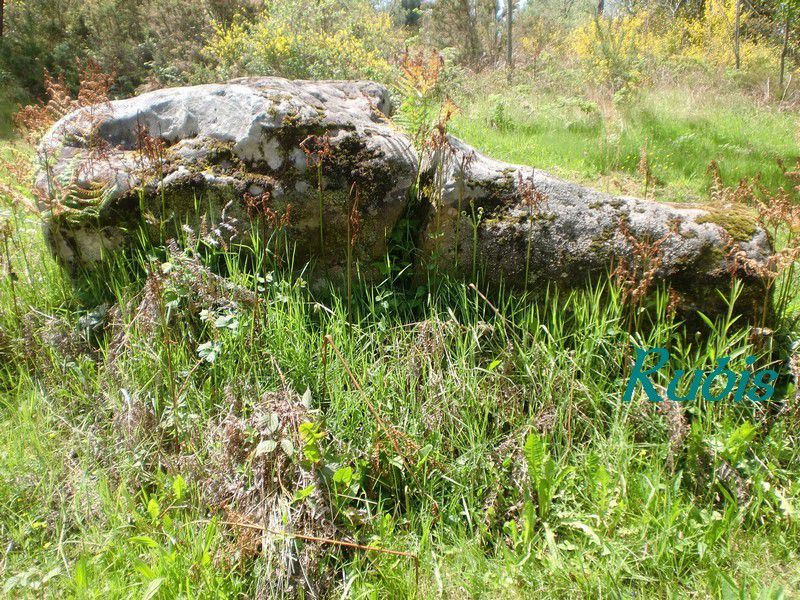 Menhir de Peyrecourt ou de la Main du Diable, Capdrot