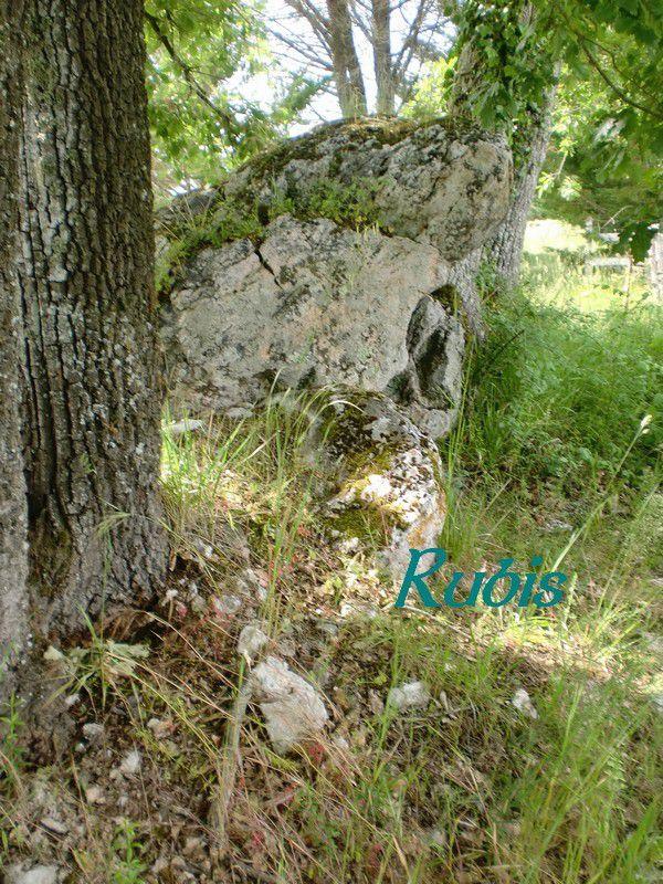 Dolmen de la Peyre Lebade de Campguilen ou de Camp-Guilhem, Faux