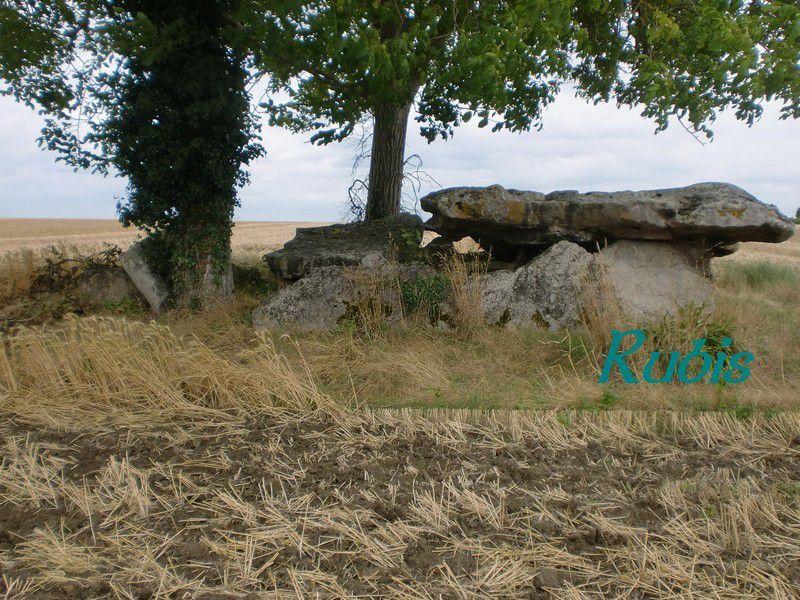 Dolmen de la Pierre Couverte de Mousseau, Les Ulmes