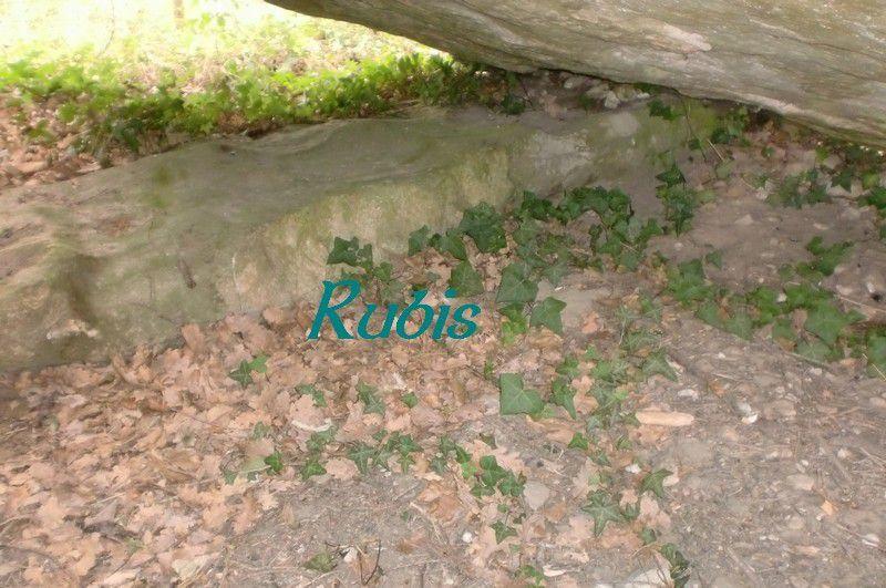 Dolmen de la Pierre Couverte du Clos Badier ou des Clerins, Rou-Marson