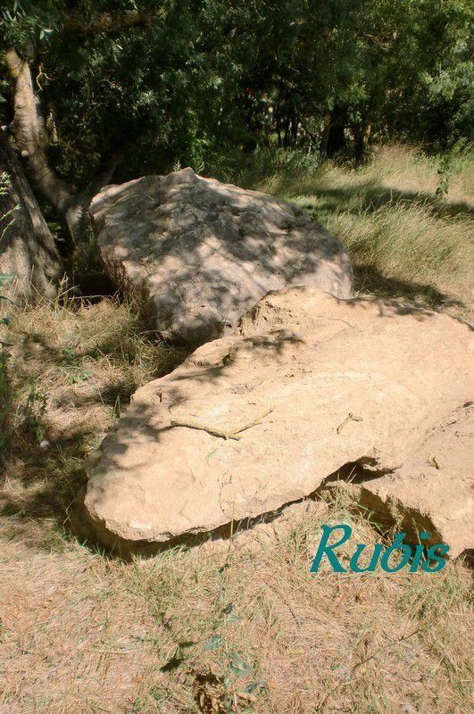 Pont mégalithique ou fossé d'Artannes, Artannes sur Thouet