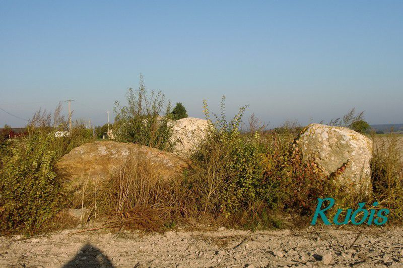 Dolmen du Griffier ou de la Pierre Forte des Girardières ou de Coulon, Antoigné
