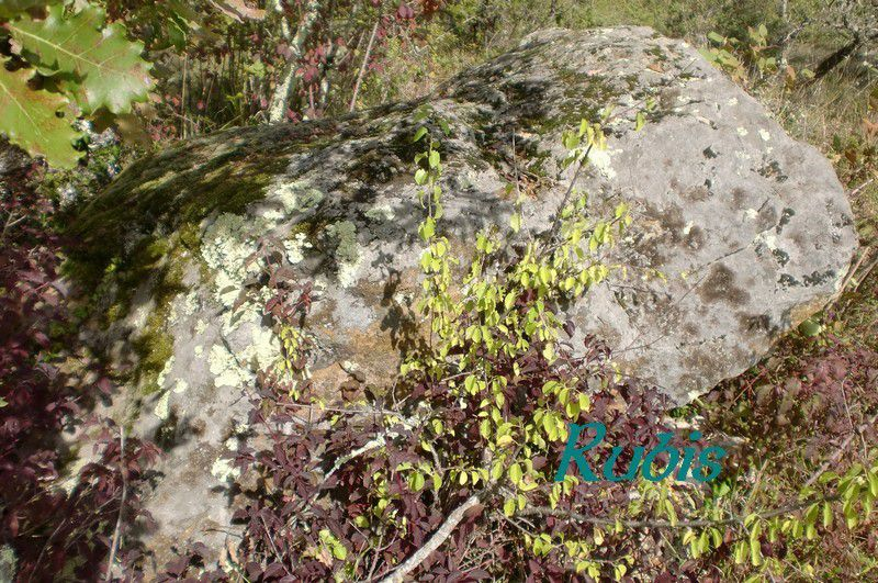 Dolmen des Fontenelles ou de Cabanes, Paunat