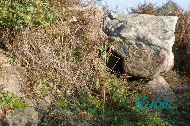 Dolmen de la Haute Gédélière, Corsept