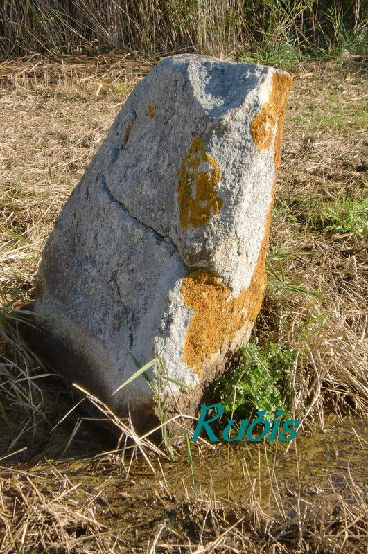 Menhir de la Pierre de Gargantua ou de la Roche des Prés, Saint Brévin les Pins