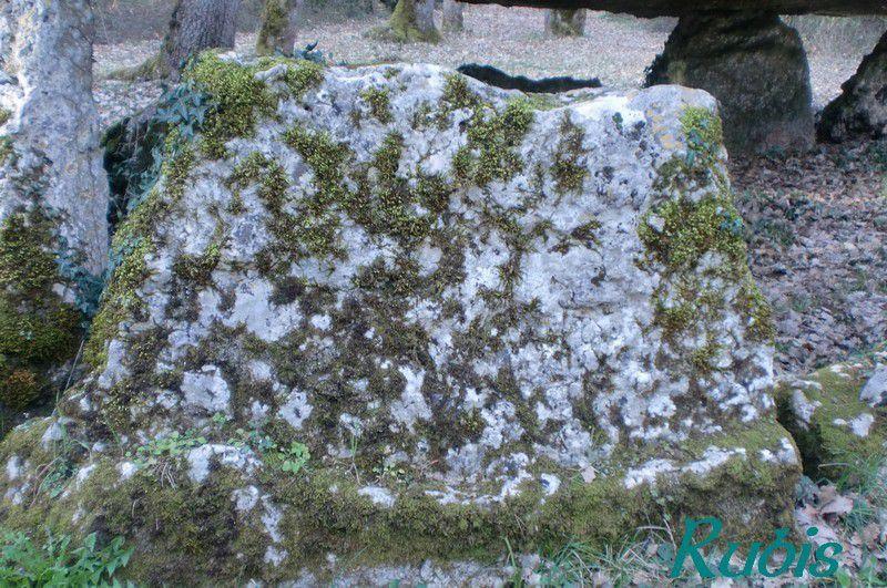 Dolmen de Pierre Pèse (ou Pèze), Limalonges