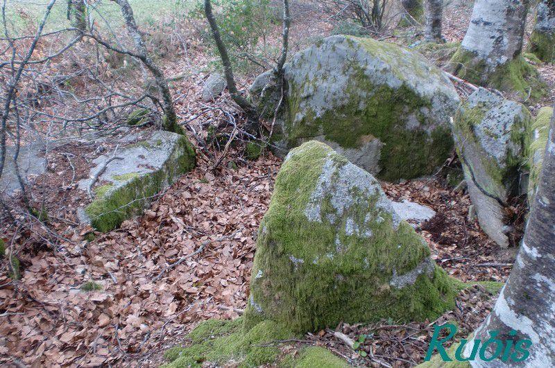 Dolmen des Ganes ou des Bains-d'en Bas, Sainte-Feyre
