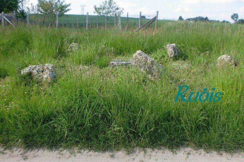 Cromlech de la Croix-Bonnin, Beaulieu-lès-Loches