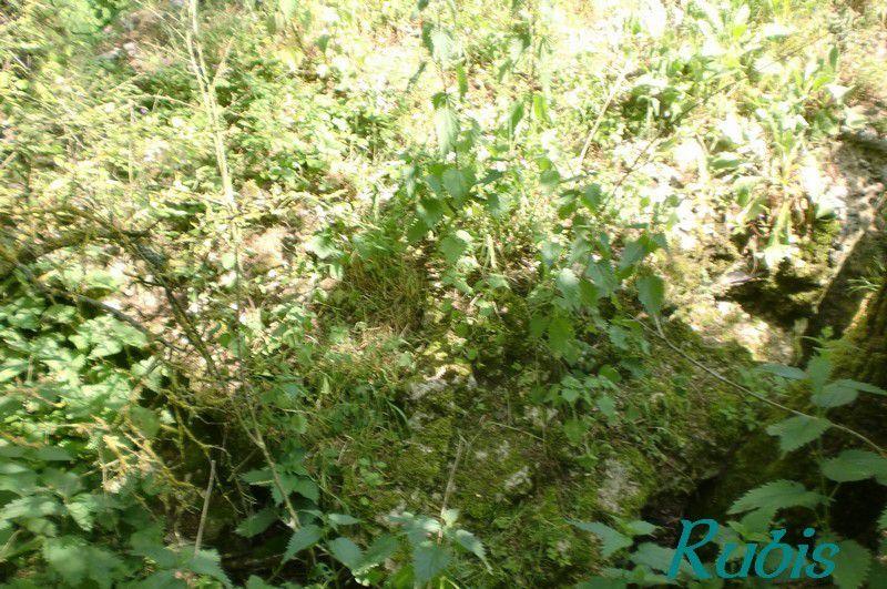 Dolmen de la Rousselière, Beauce-la-Romaine