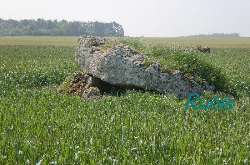 Dolmen A ou 1 des Pierres de Gargantua ou de Villemafroy, Beauce-la-Romaine