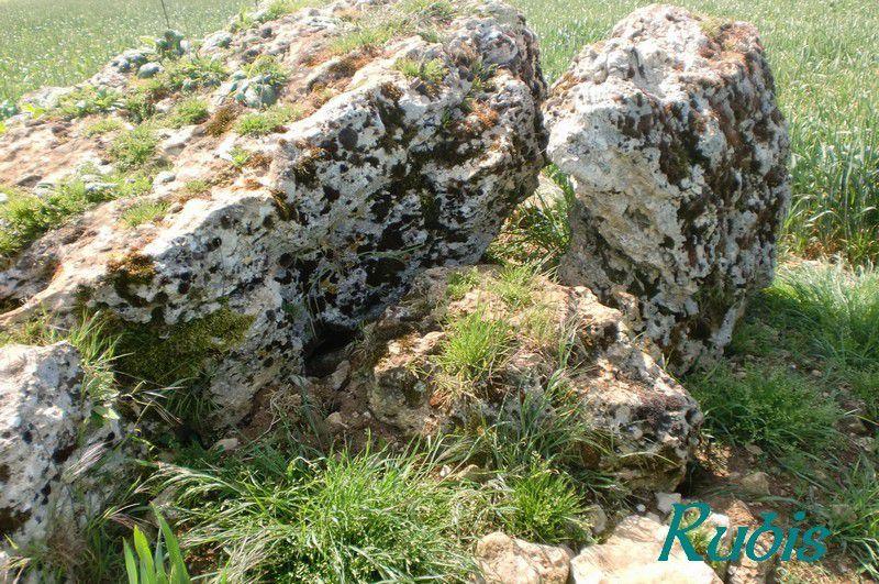Dolmen B ou 2 des Pierres de Gargantua ou de Villemafroy, Beauce-la-Romaine