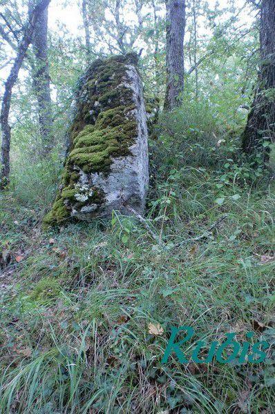 Allée funéraire de Chanteloube, Sainte-Colombe-en-Bruilhois