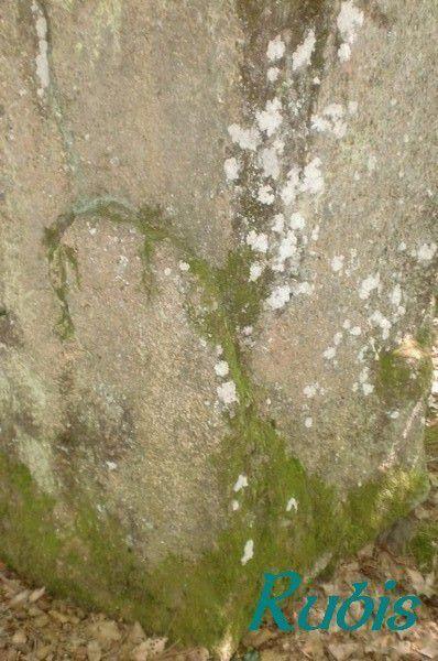 Menhir de la Peyre Quilhade ou de Peyre Juge ou de Selves, Auriac