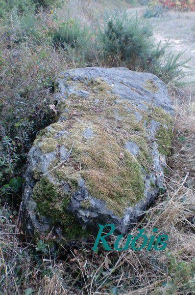 Menhir de la Plançonnière, Brem-sur-Mer