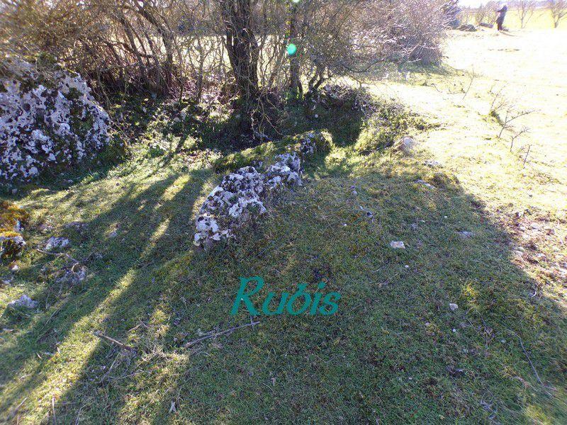 Dolmen B d'Artron, Usson-du-Poitou