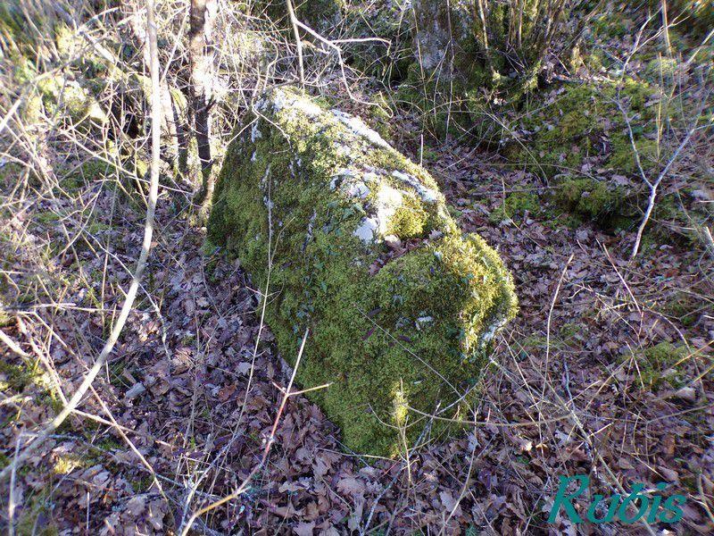 Dolmen B1 de l'Echalette, Chenon