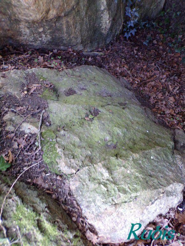 Dolmen de la Taulière ou de Pontblossier, Ruan-sur-Egvonne