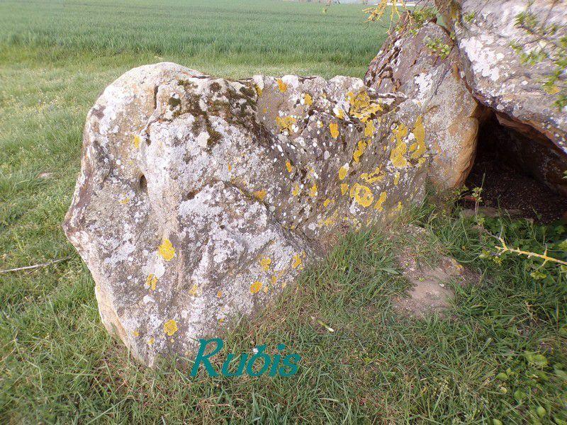 Dolmen du Chillou de Feuillet ou du Cimetière des Fées ou du Cimetière des Pucelles, Marcé-sur-Esves
