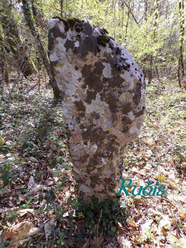 Menhir de la Haute Borne ou de la Grande Borne ou de Trompe-Souris, Chanceaux-près-Loches
