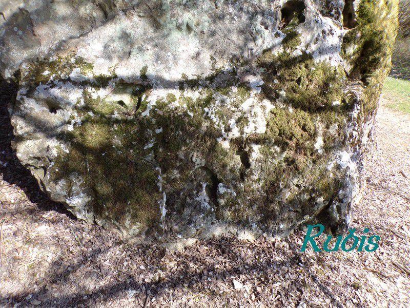 Dolmen de la Pierre Chaude ou du Siège des Fées, Paulmy