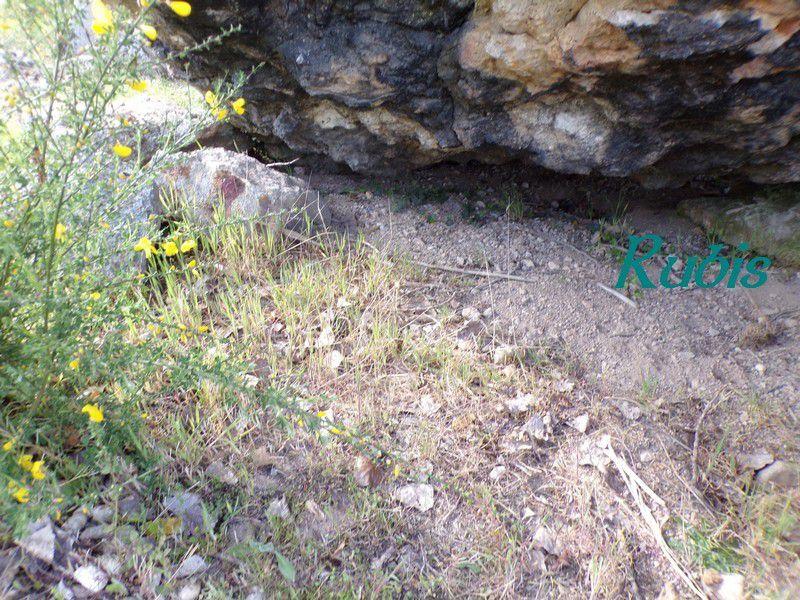 Dolmen de la Pierre Levée de Confluent, Yzeures-sur-Creuse