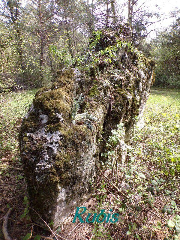 Menhir de la Bachelière ou de la Pierre Levée, Chédigny