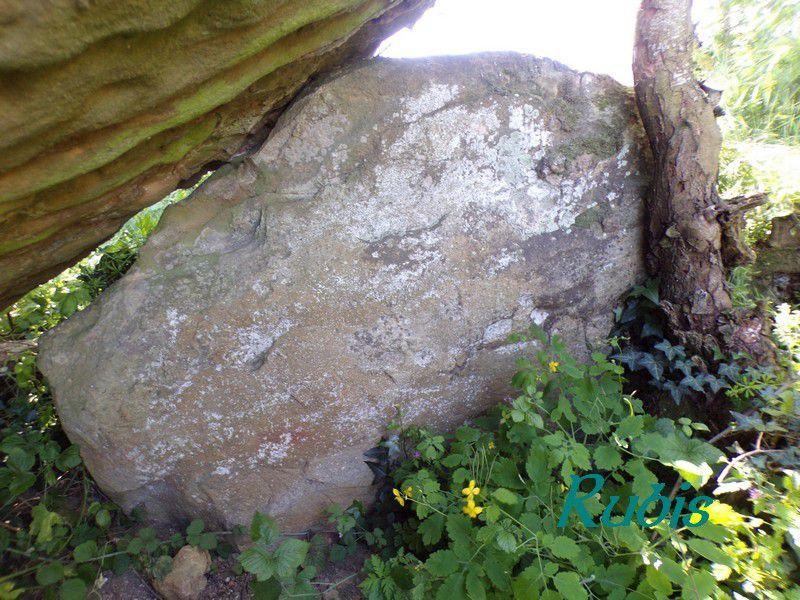Dolmen de la Pierre Couverte, Thizay